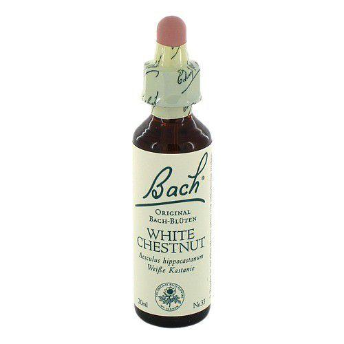 BACHBLÜTEN White Chestnut Tropfen | PZN: 00170104 | Delmed